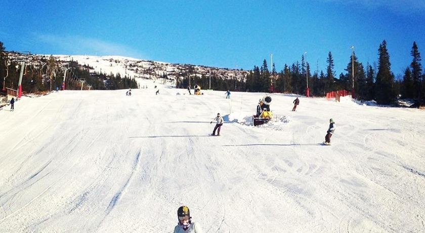 free adult dating severdigheter ski
