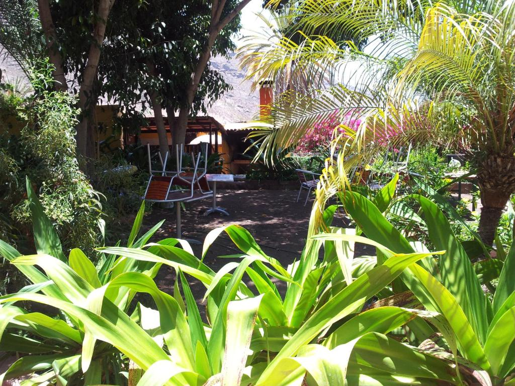 El jardin mog n informationen und buchungen online for El jardin online