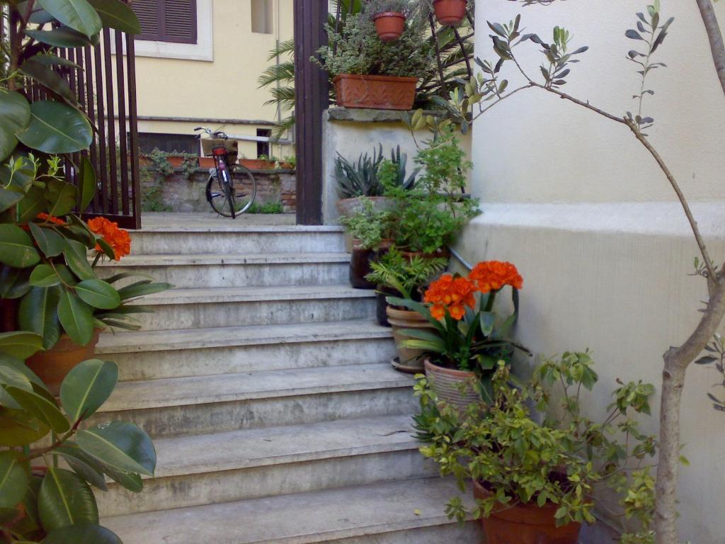 Le finestre di luz b b rome online booking viamichelin - Le finestre roma ...