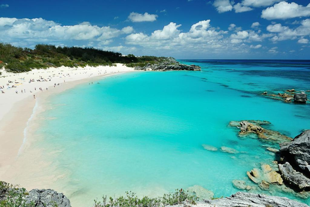 online store 5af66 0fe64 Bermuda Dreams, Apartment Hamilton