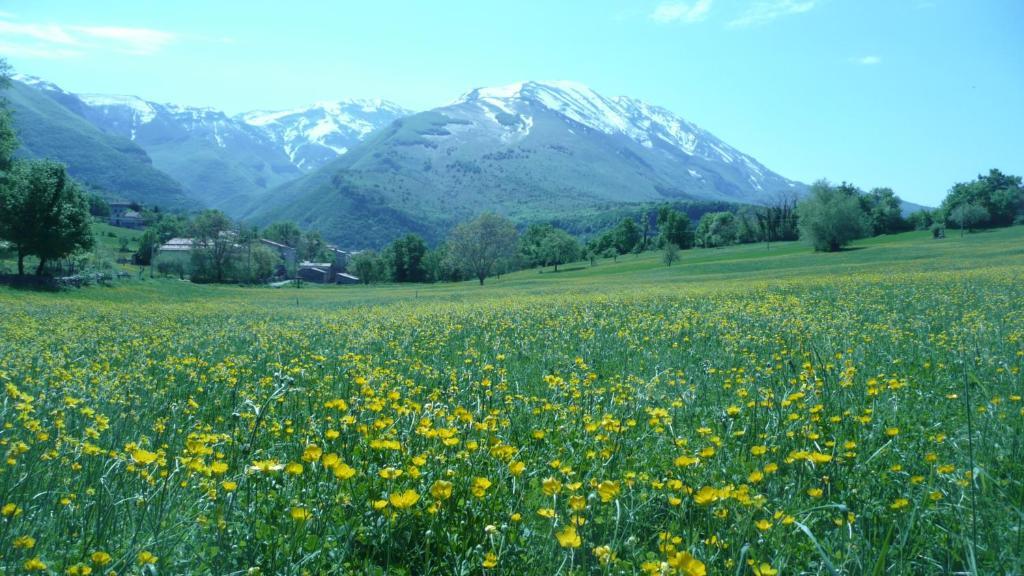 Poesia D Abruzzo Lettomanoppello Informationen Und
