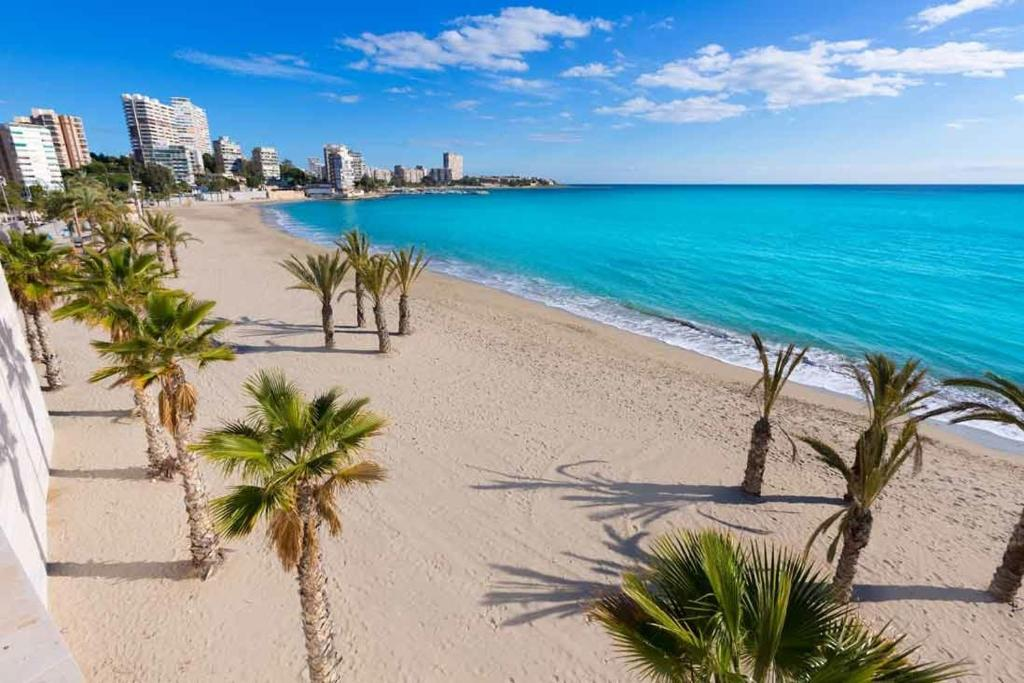 Albufereta Beach Alicante Kasa25 Best Beaches