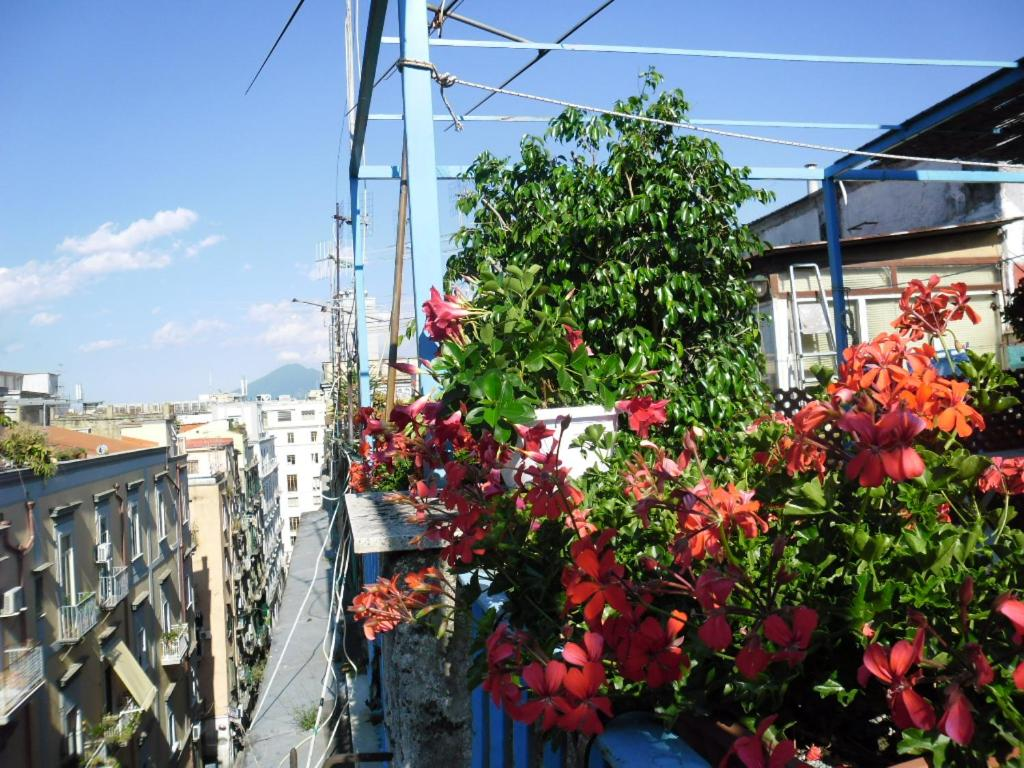 La Terrazza, Holiday home Napoli