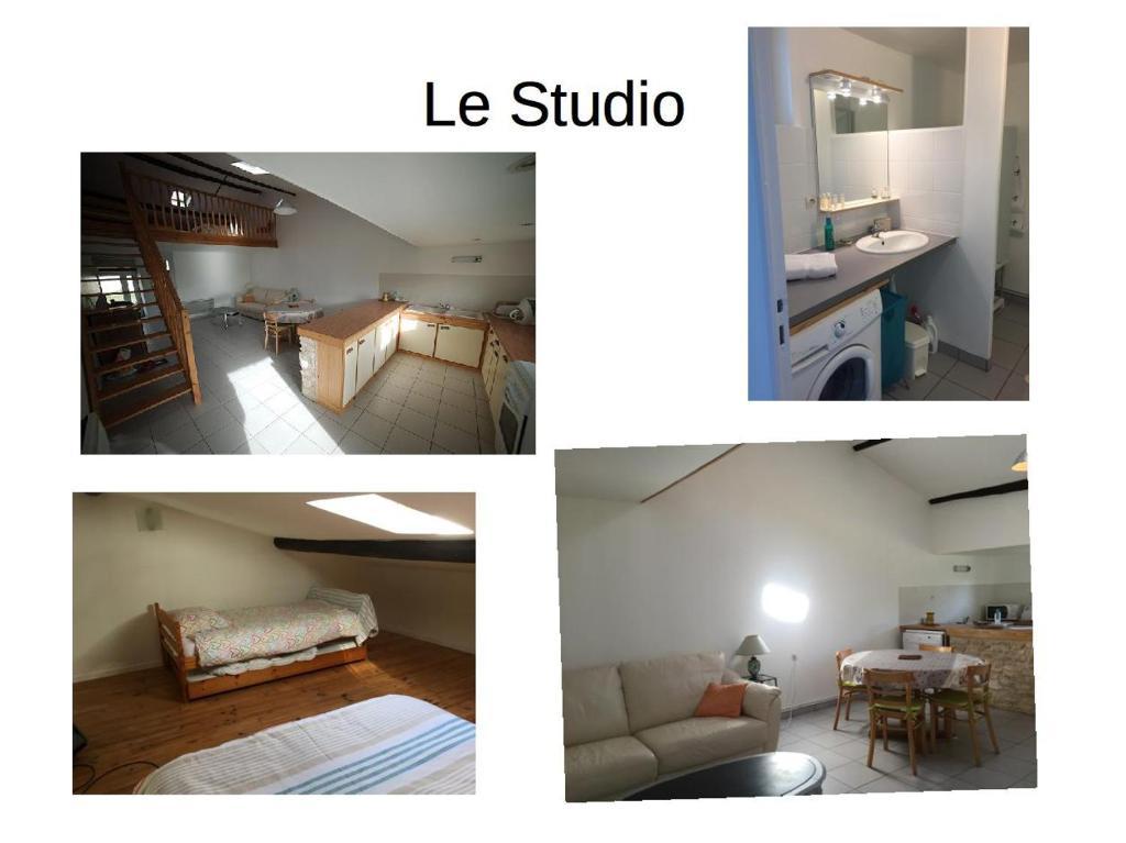 Le Bois Tableau - Maison de vacances à Muron en Charente Maritime (17)