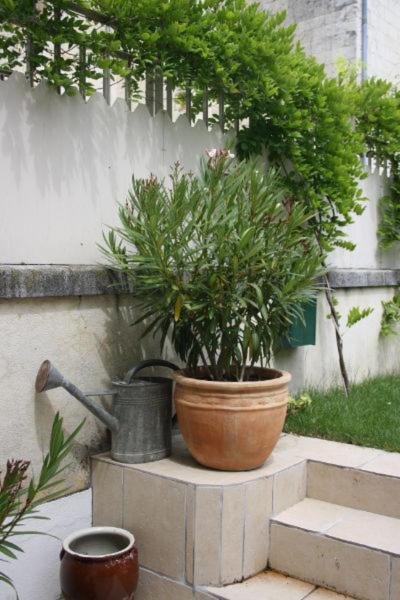 Le clos saint etienne r servation gratuite sur viamichelin - Terrasse vue jardin marseille saint etienne ...