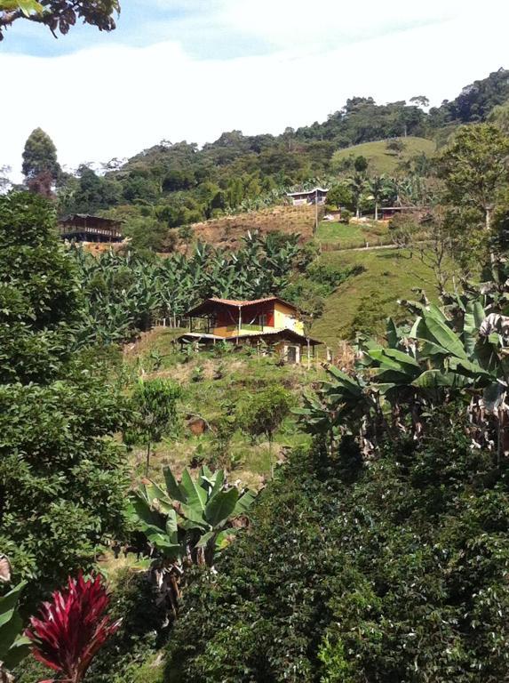 Garden View Lodge Gites Jardin
