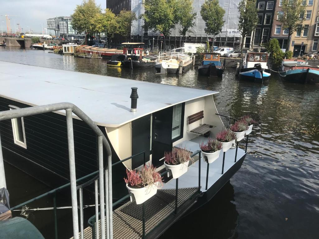 Boat & Breakfast, Boat Amsterdam