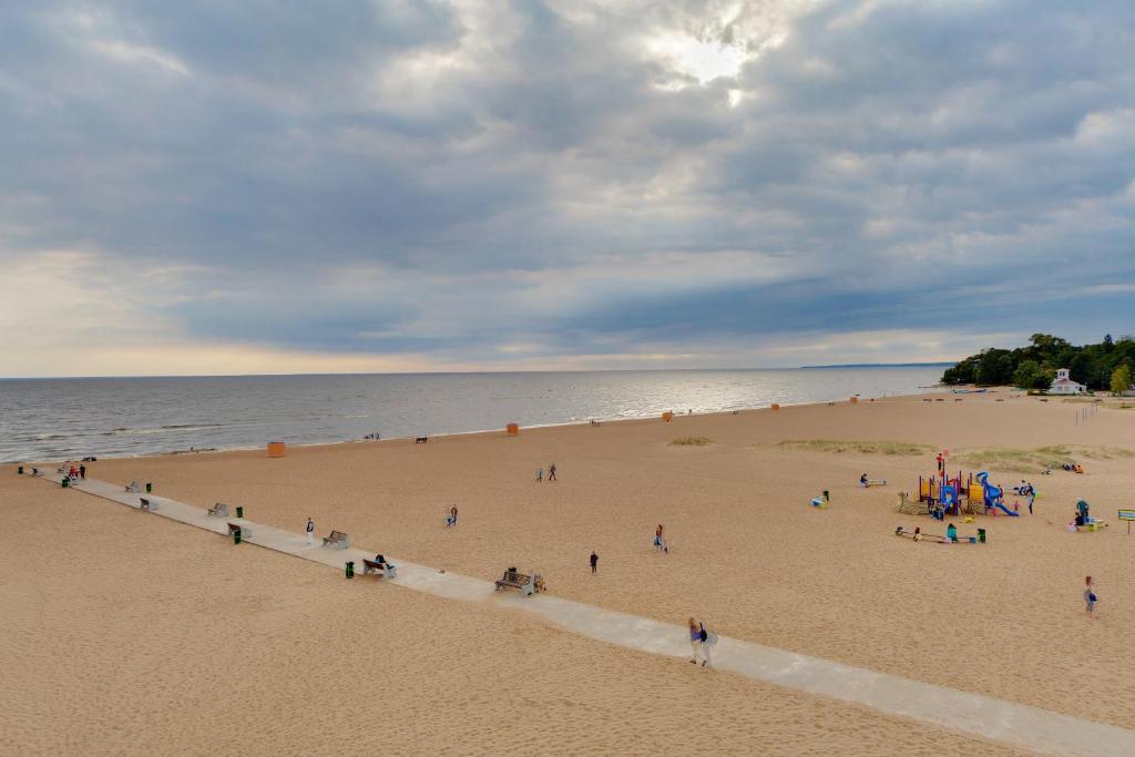 зеленогорск ленинградская область фото пляжей и набережной баффета