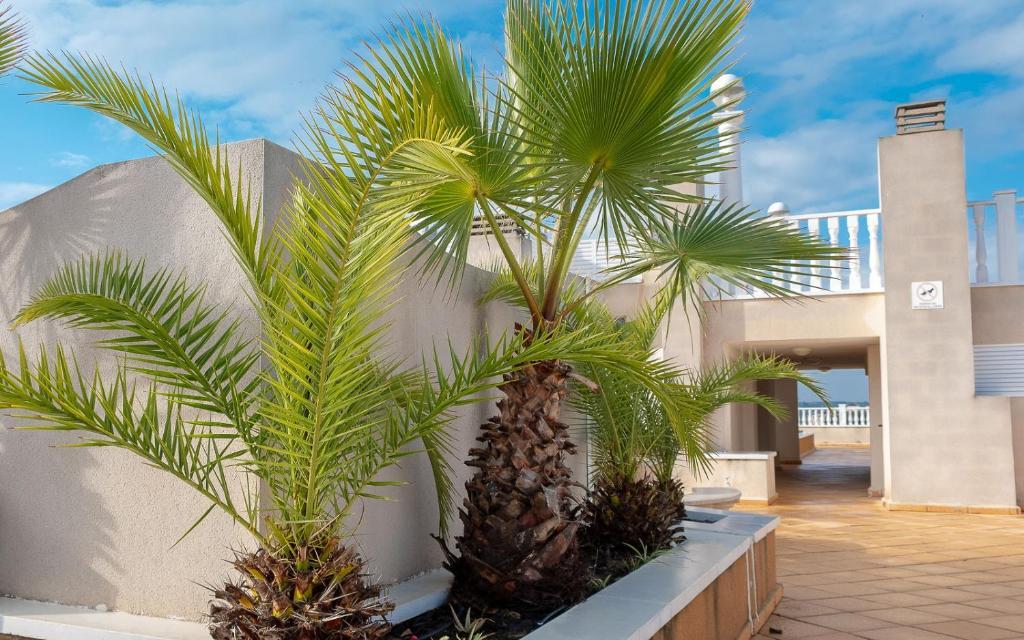Badkamer Op Formentera : Casa haco appartement formentera de segura