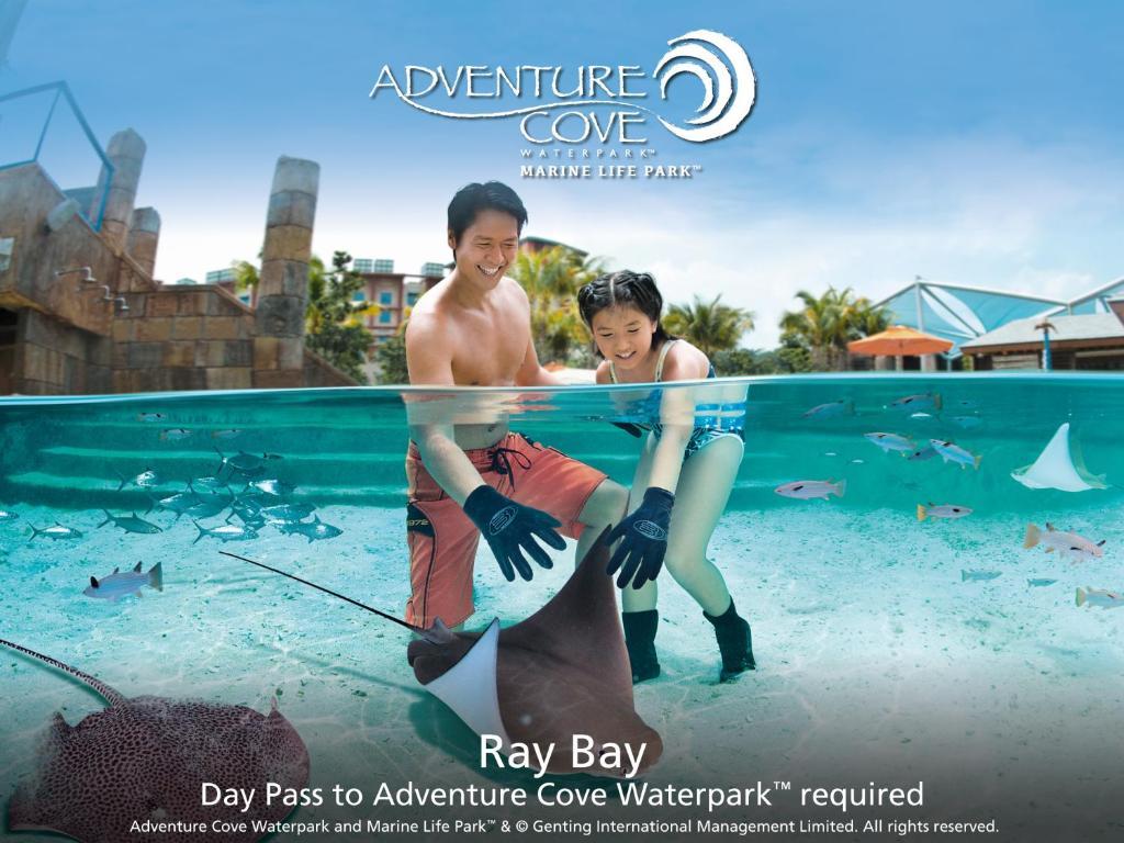 Resorts World Sentosa Festive Hotel Holiday Residences In Singapore Et Tiket Adventure Cove Park 10 Photos