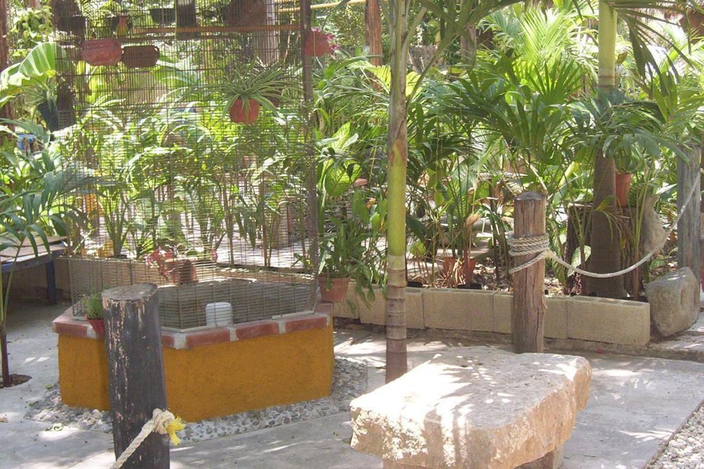 Posada el jardin ticul book your hotel with viamichelin for Posada el jardin