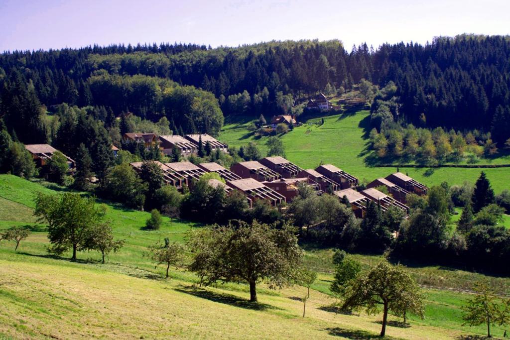 Terrassenpark Sasbachwalden