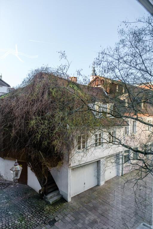 City Apartment An Der Caracalla Therme Baden Baden
