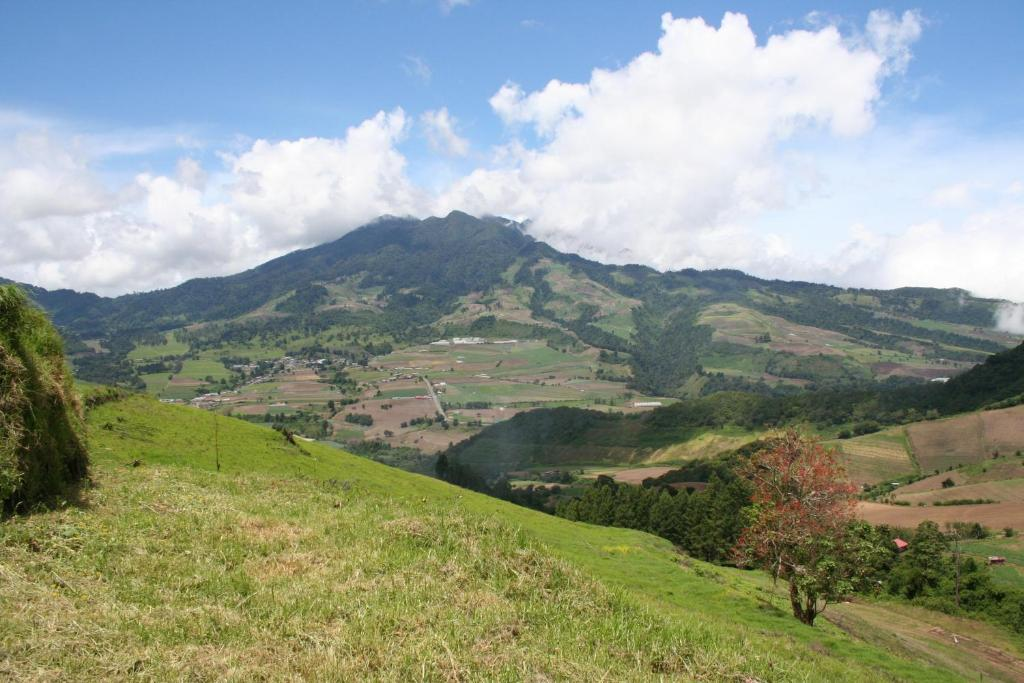 cerro punta chat rooms Cerro punta tourism: tripadvisor has 663 reviews of cerro punta hotels,  attractions, and  we check up to 200 sites for the latest and lowest prices.