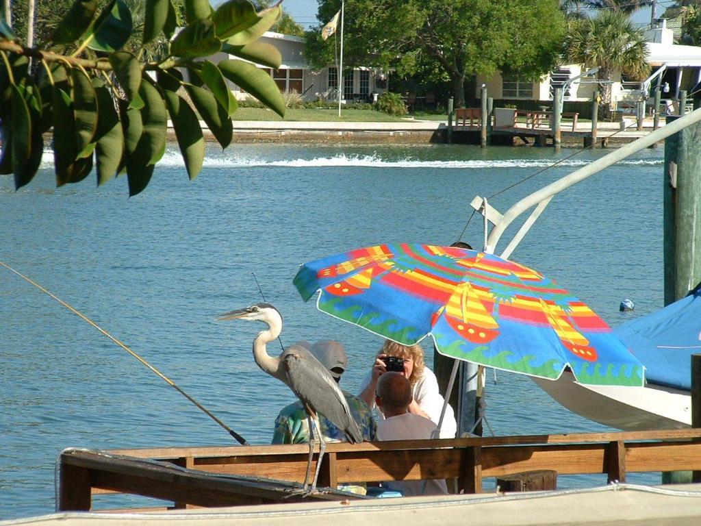 Affordable Beach Condos Treasure Island Fl