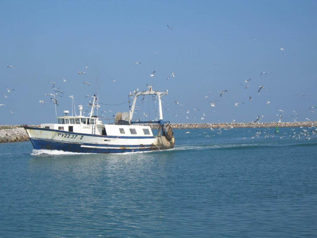 Logis h tel mediterranee port la nouvelle prenotazione - Meteo port la nouvelle ...