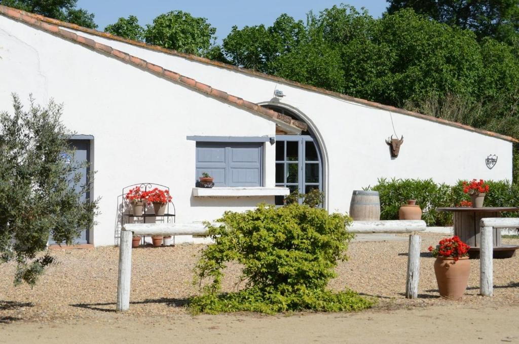Bed  Breakfast Mas Du Mnage En Camargue  Manade Clauzel Bed