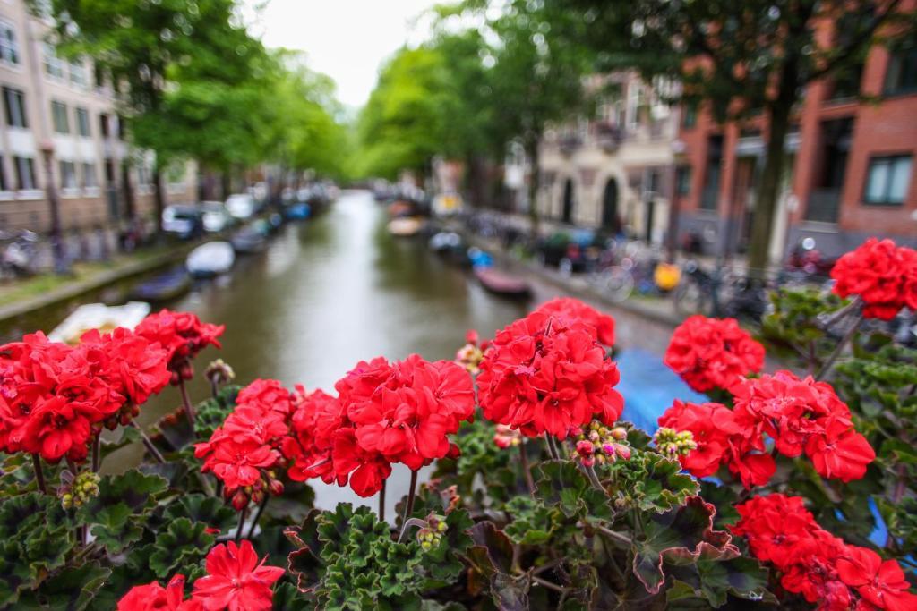 Hotel Looier Amsterdam