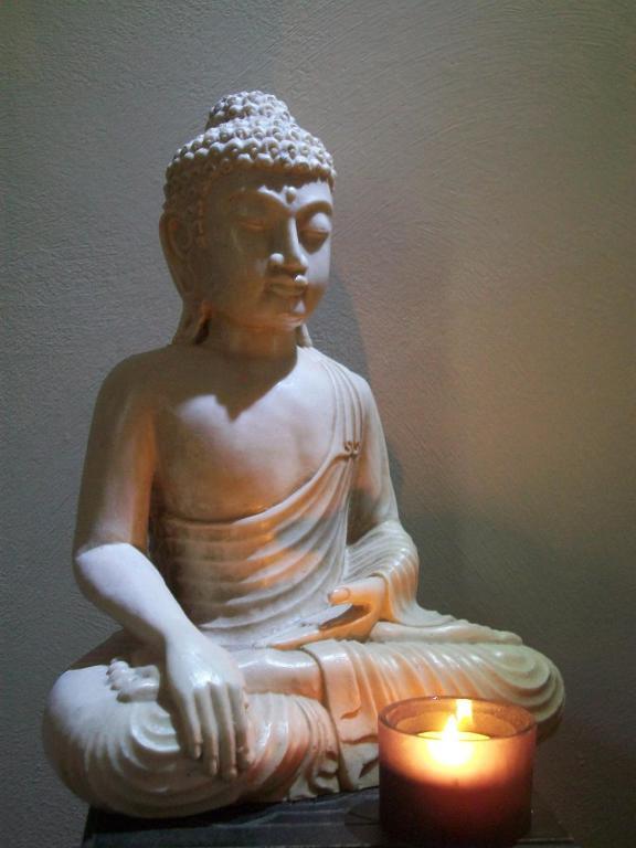 chambre zen de beauval affittacamere seigy