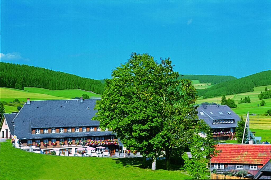Hotel Zum Lowen Unteres Wirtshaus Titisee Neustadt