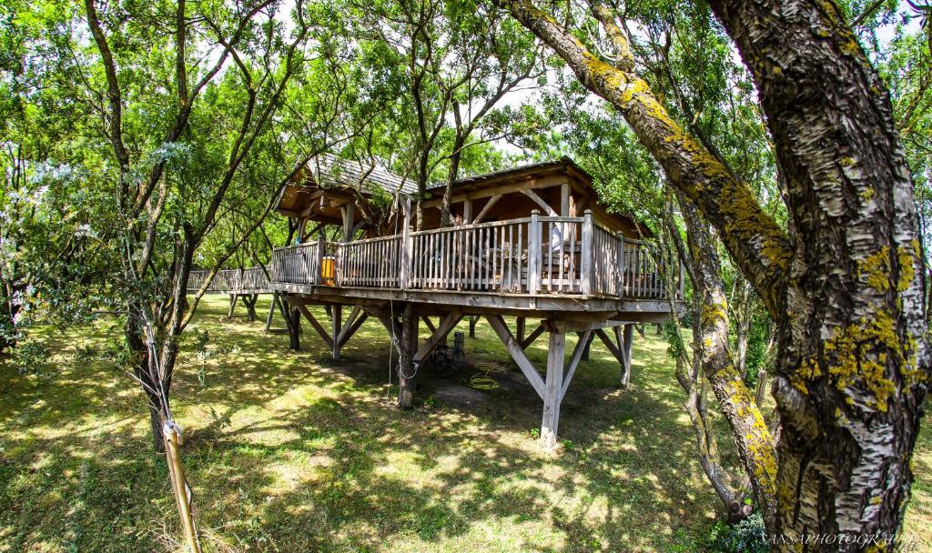 cabane d 39 amour cabane dans les arbres b ziers dans l 39 h rault 34 6 km de s rignan. Black Bedroom Furniture Sets. Home Design Ideas