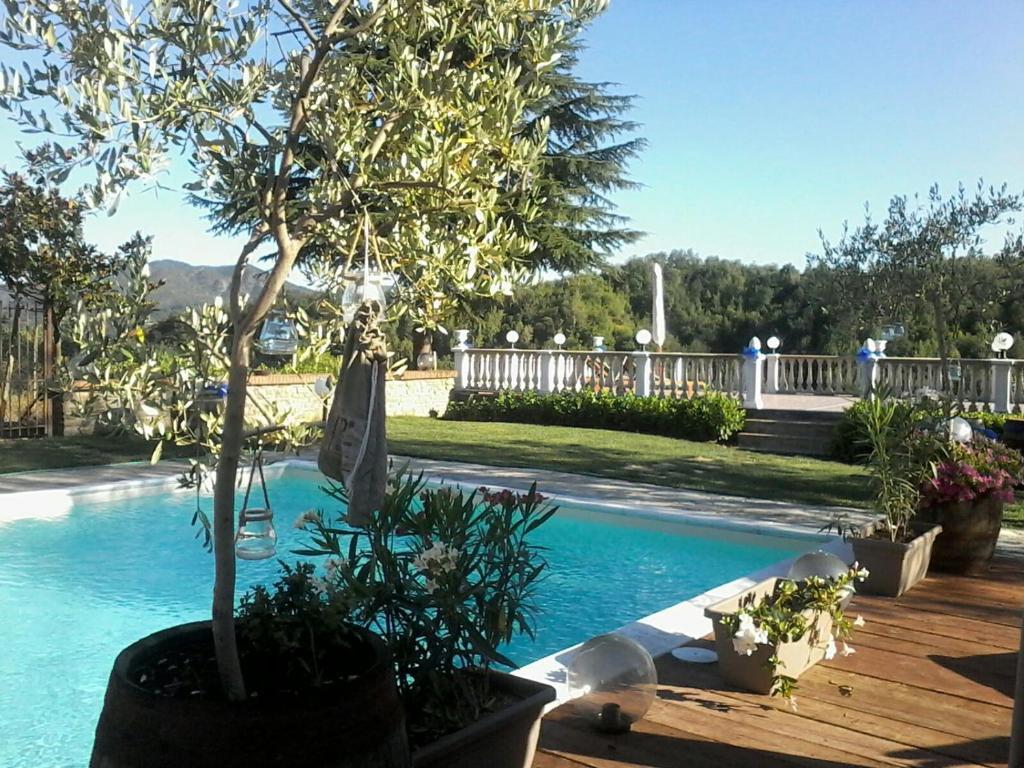 Hotel Ristorante La Bruceta - Molare - prenotazione on-line ...