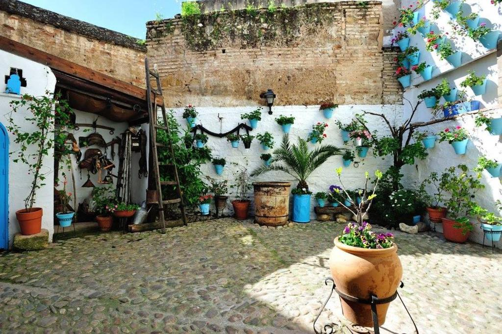 de patios bed breakfast cordoba
