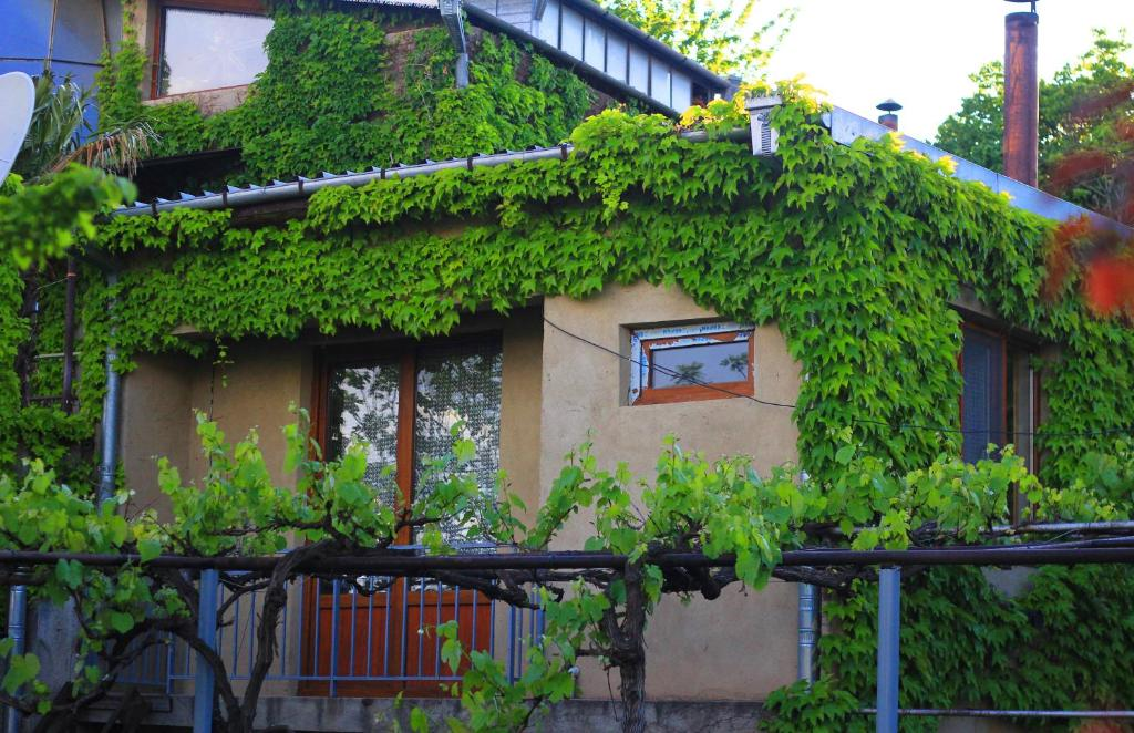 Guest huis green veranda bed breakfast mtskheta