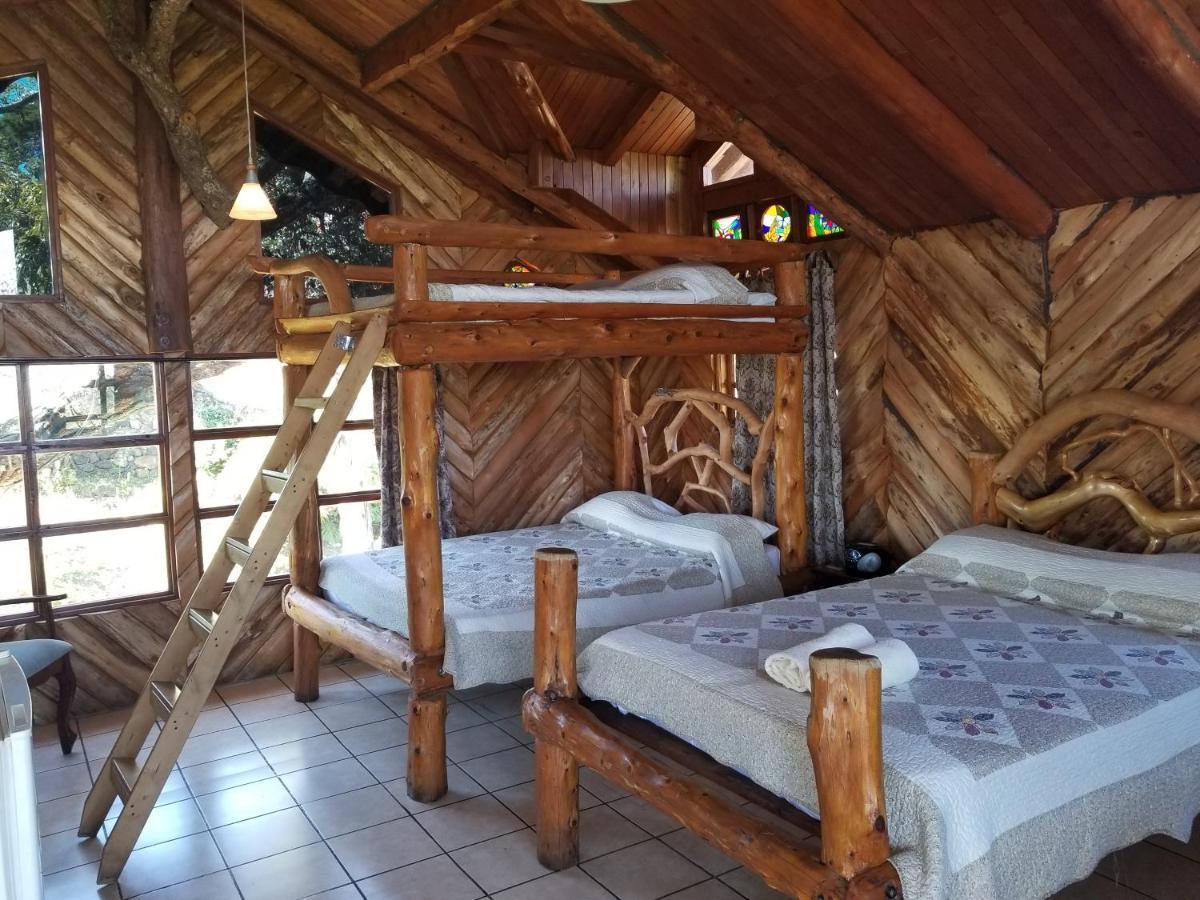 Hotel Monte Campana Heredia-photo239