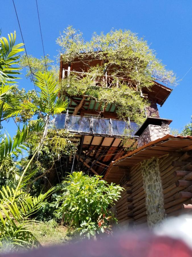 Hotel Monte Campana Heredia-photo43