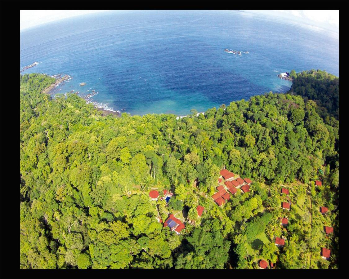 Hotel Casa Corcovado Jungle Lodge-photo50