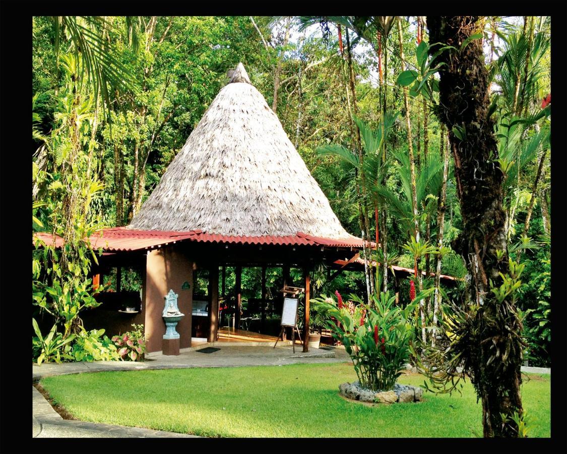 Hotel Casa Corcovado Jungle Lodge-photo61