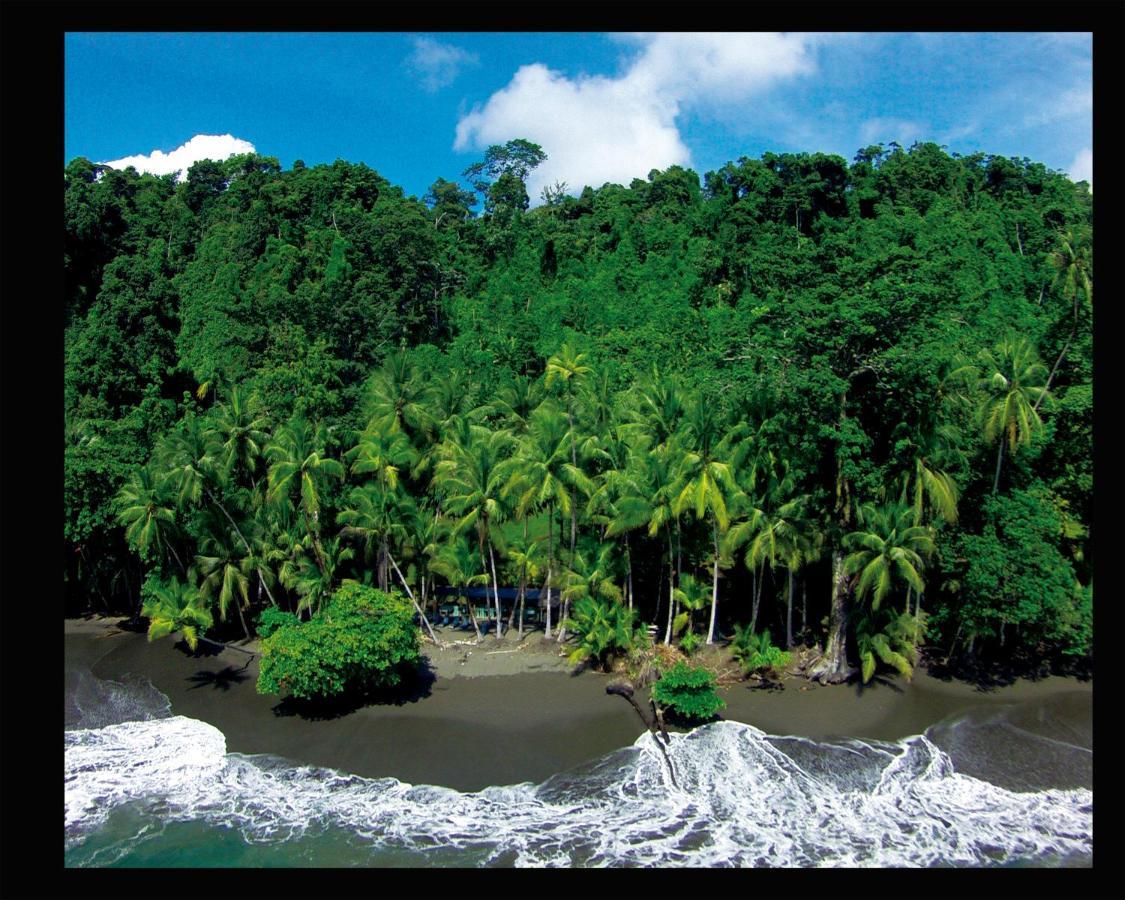 Hotel Casa Corcovado Jungle Lodge-photo31