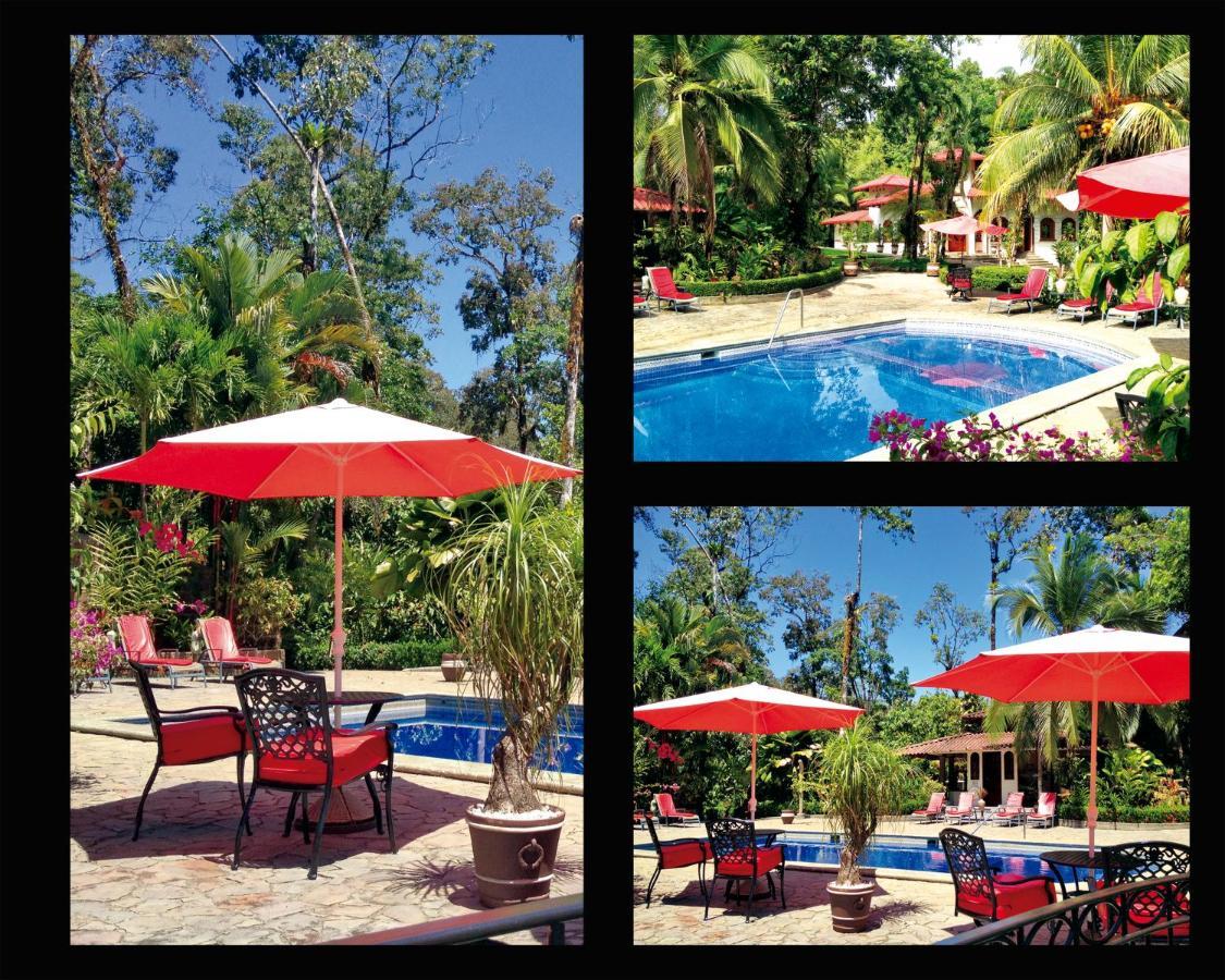 Hotel Casa Corcovado Jungle Lodge-photo16