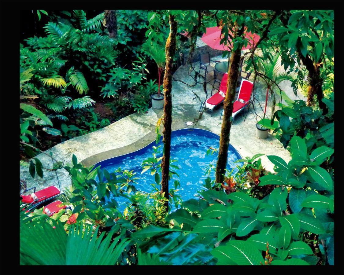 Hotel Casa Corcovado Jungle Lodge-photo15