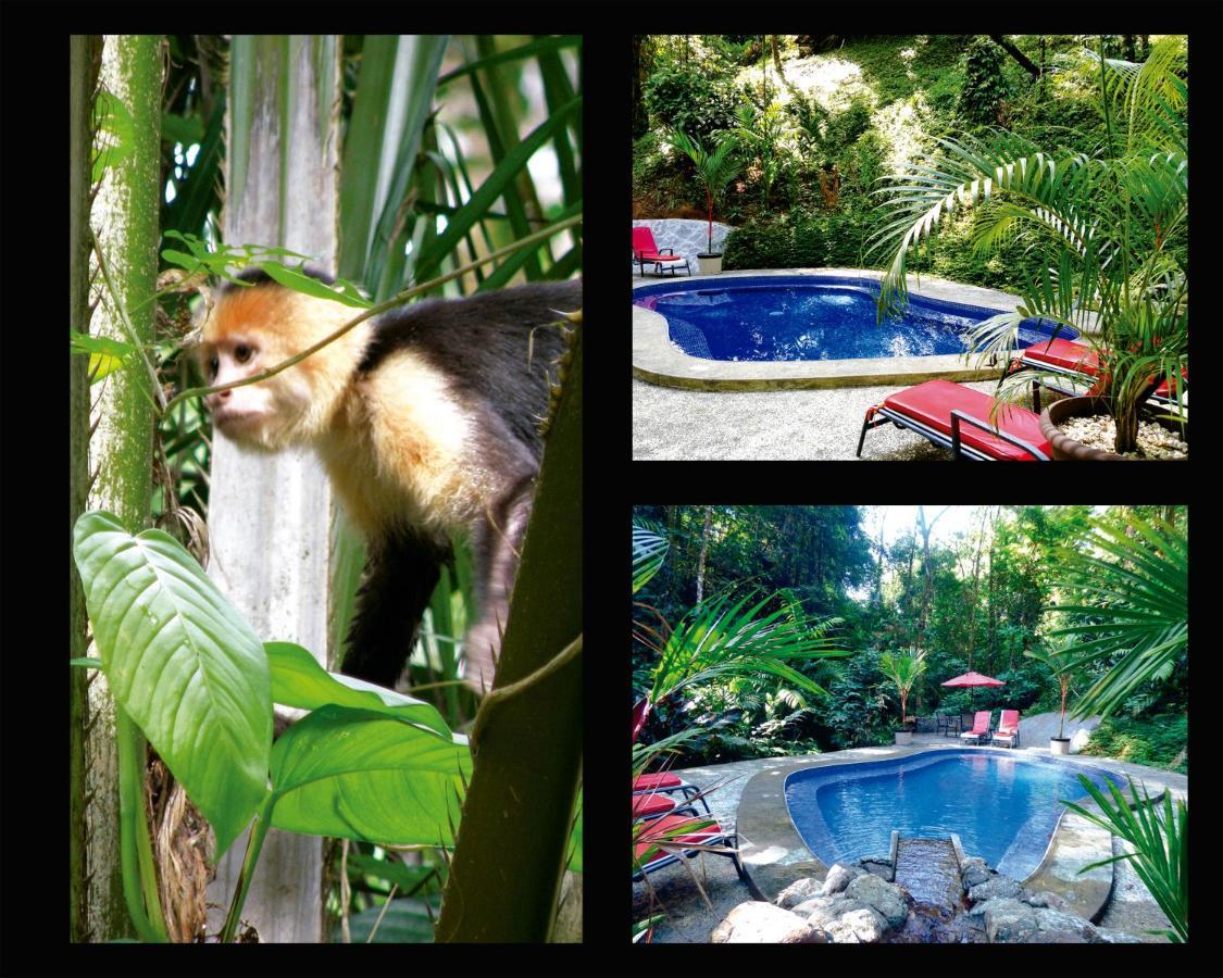 Hotel Casa Corcovado Jungle Lodge-photo14