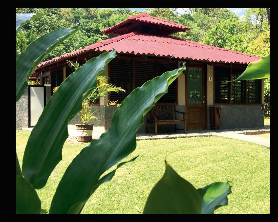 Hotel Casa Corcovado Jungle Lodge-photo7