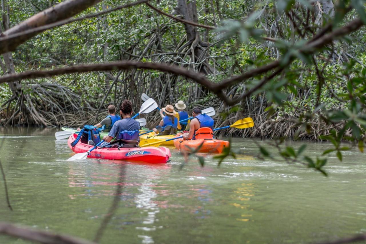 Kayak Lodge-photo28