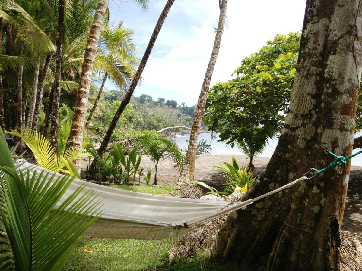 Hotel Casa Corcovado Jungle Lodge-photo46