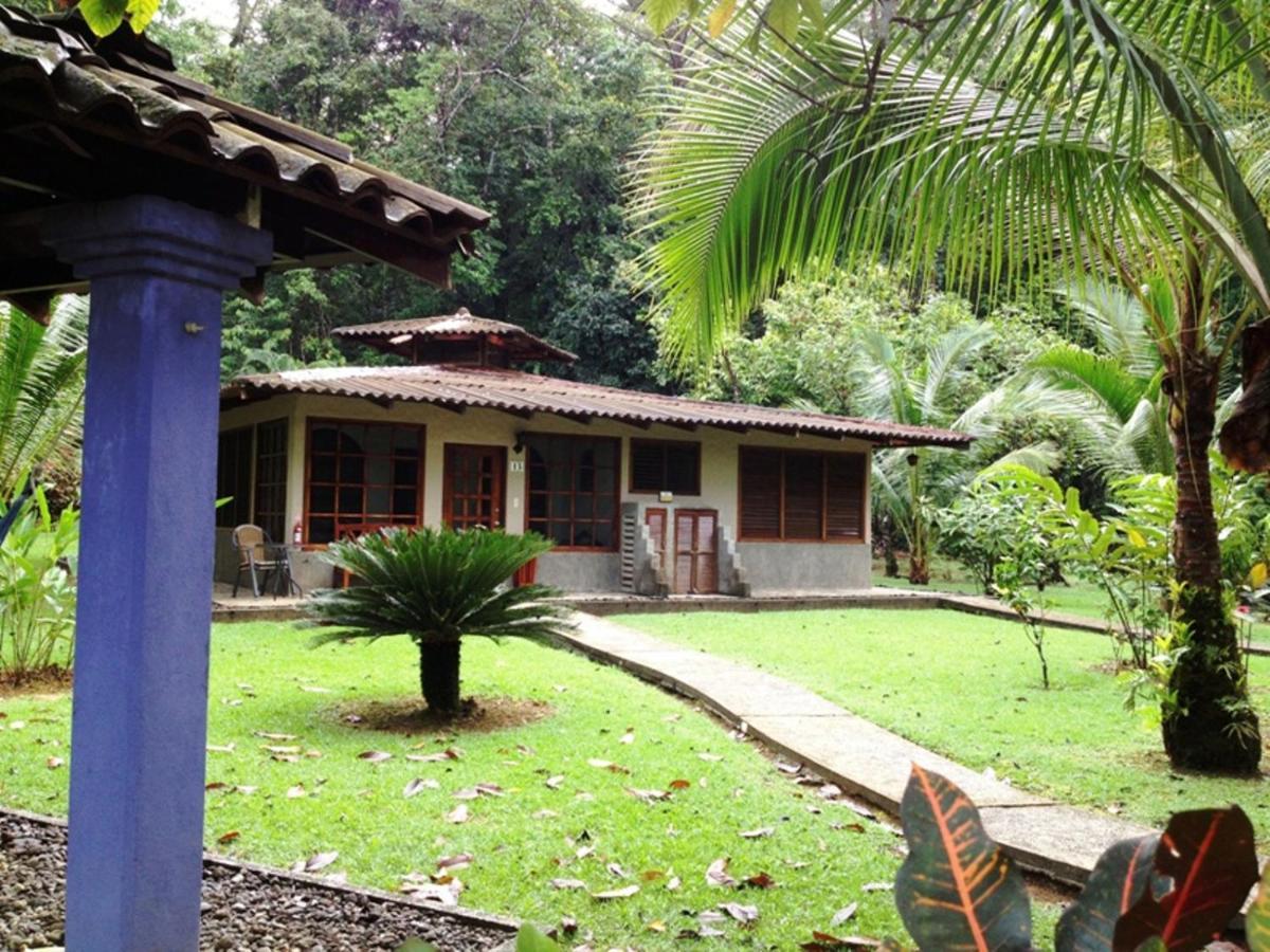 Hotel Casa Corcovado Jungle Lodge-photo49