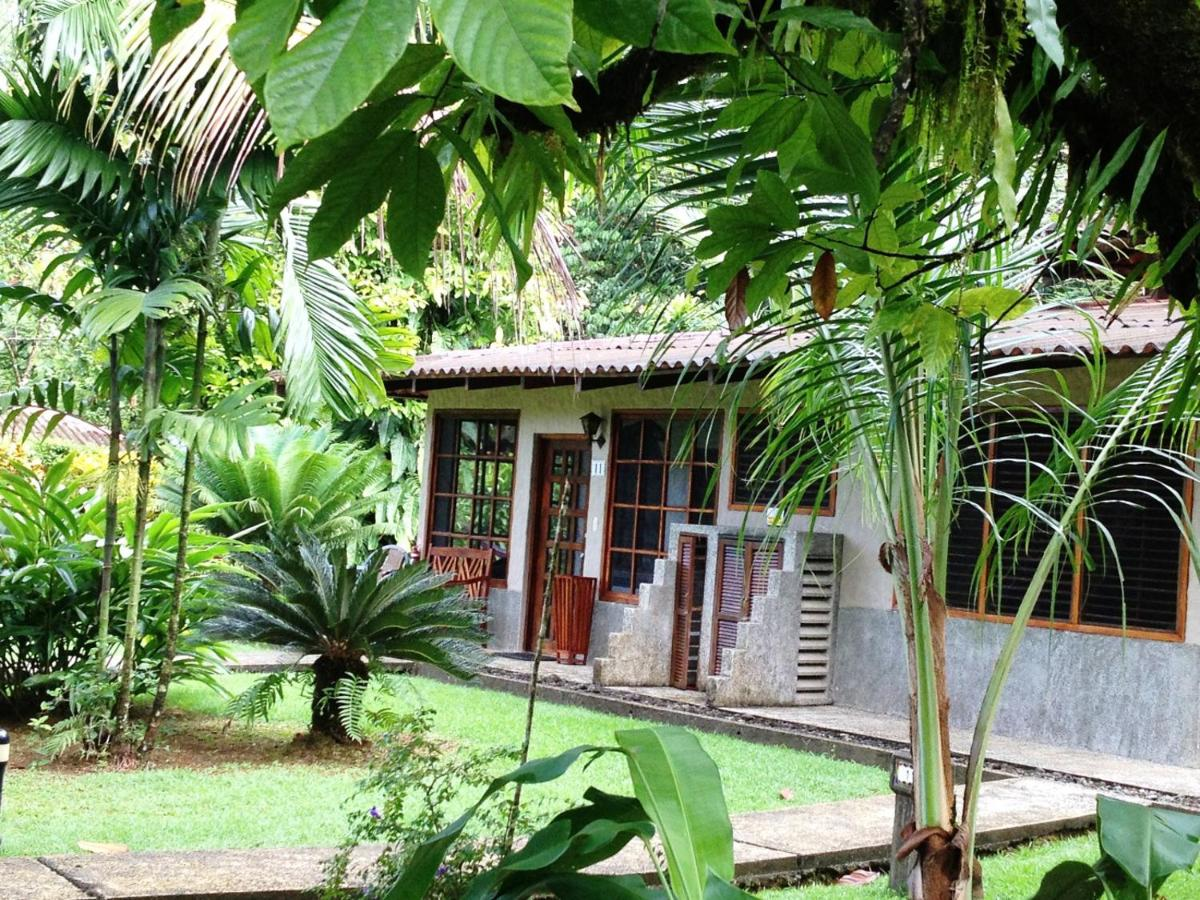 Hotel Casa Corcovado Jungle Lodge-photo41