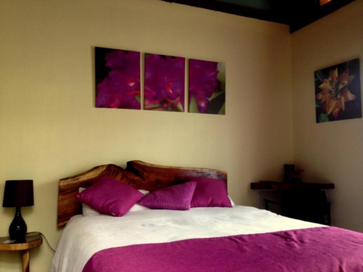 Hotel Villa Colon-photo25