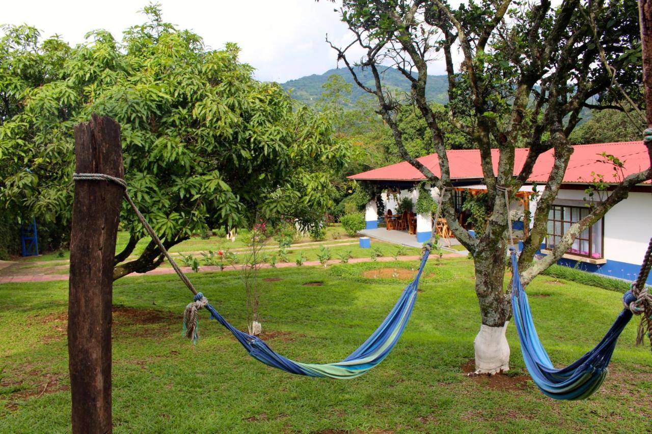 Hotel Villa Colon-photo9