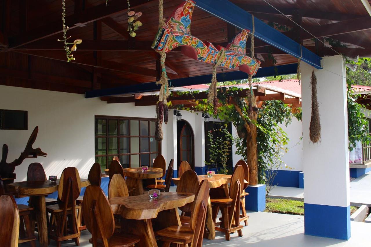 Hotel Villa Colon-photo8