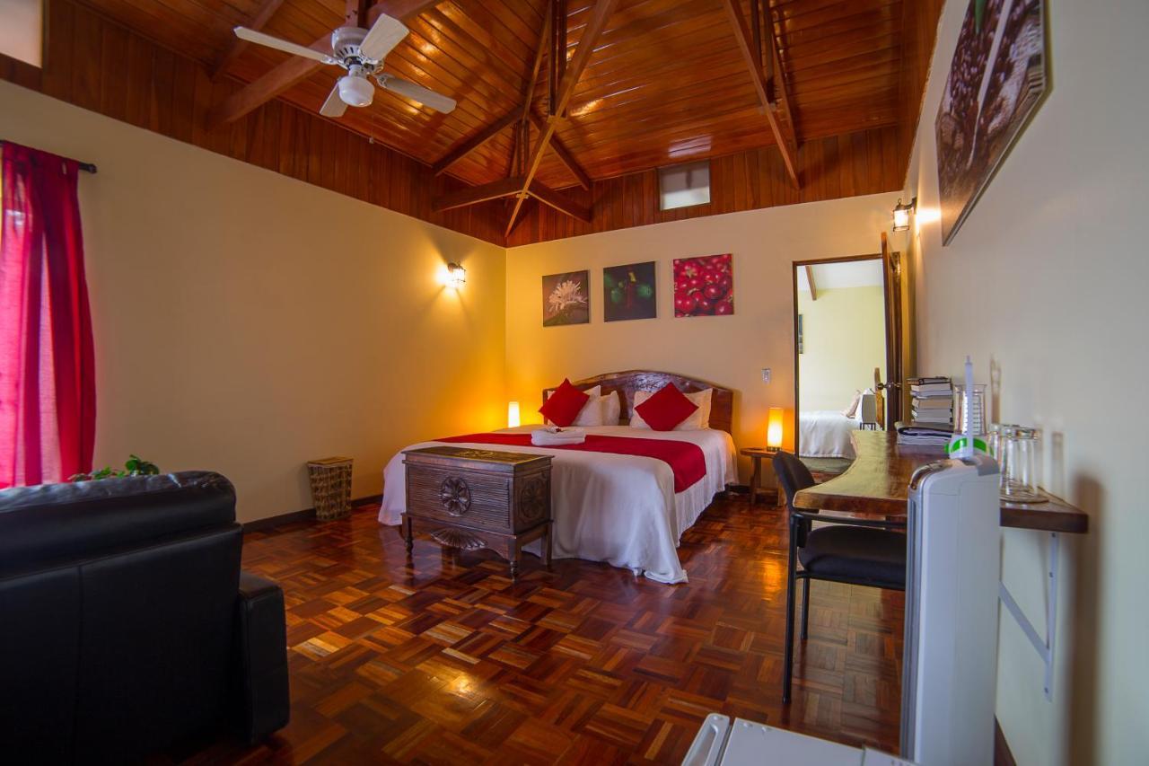 Hotel Villa Colon-photo4