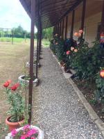 Guest house Mandarinhouse, Penzióny - Alakhadzi