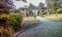 Kilimamoto Homestay, Гостевые дома - Аруша
