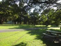 Greytown Campground, Villaggi turistici - Greytown