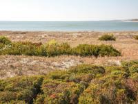Pelican Watch 1380 Villa, Vily - Seabrook Island