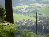 Ferienwohnung Thomas Baumann, Apartments - Baiersbronn